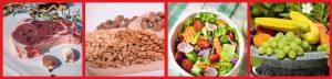 Basic Diet nutrition elements